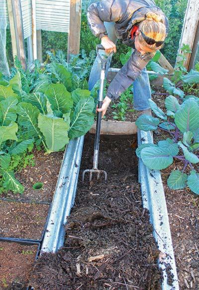compost-path